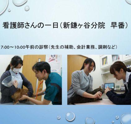 看護師 病院説明会 – コピー_ページ_12