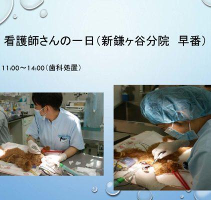 看護師 病院説明会 – コピー_ページ_18