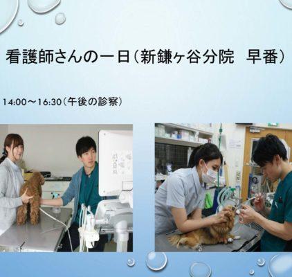 看護師 病院説明会 – コピー_ページ_21